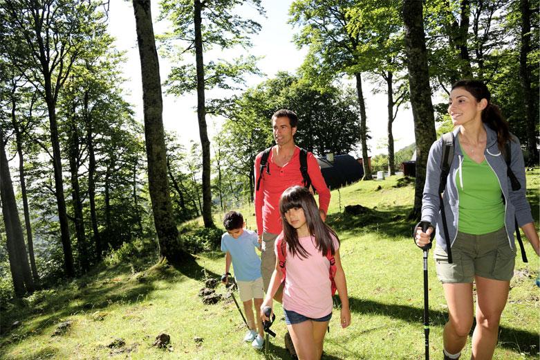 Walking Scotland Loch Lomond