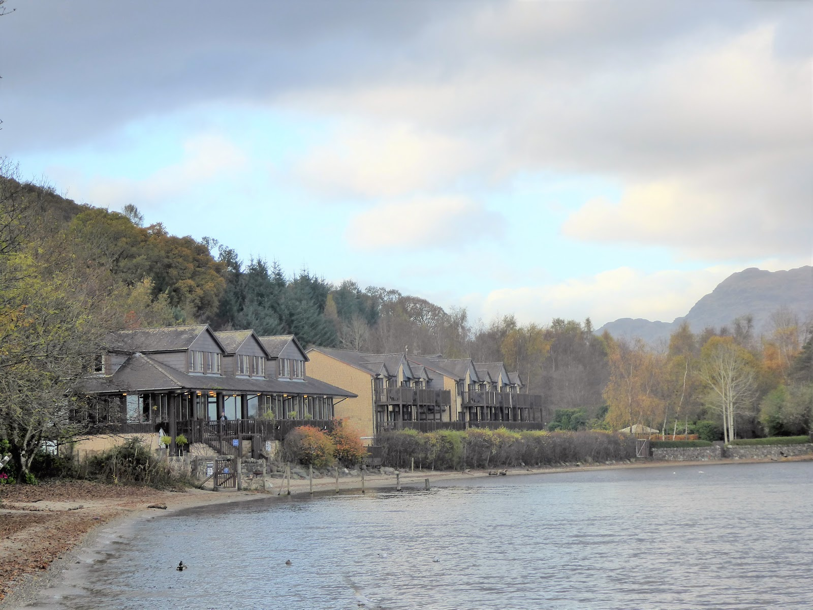 Lodge On Loch Lomond Winter Lodge On Loch Lomond